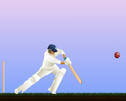 Howzat cricket game on facebook! Youtube.