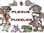 Shiver Me Pieces - Plexus Puzzles