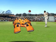 test-catch-cricket.jpg