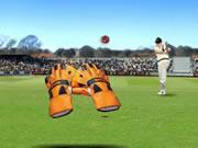 test-catch-cricket.jpg