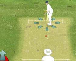 The Ashes Cricket