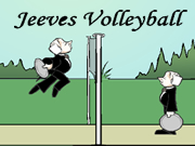 Jeeve's Volleyball