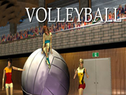 Volleyball Games