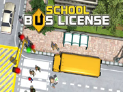 Driving School Bus License