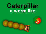Caterpillar, a worm like