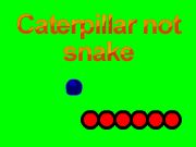 Caterpillar not snake