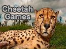 Cheetah Games
