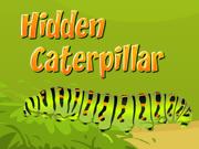 Hidden Caterpillar