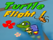 Turtle Flight