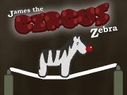 Circus Zebra