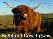 Highland Cow Jigsaw