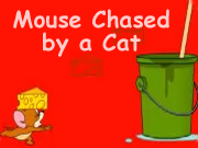 Mouse Chased by a Cat