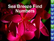 Sea Breeze Find Numbers