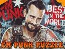 CM Punk Puzzle