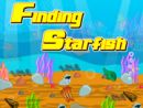 Finding Star Fish