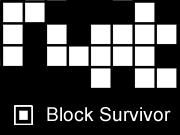 Block Survivor