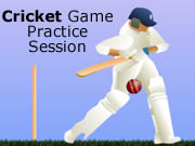 Cricket Game Practice Session