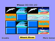 Dolphin Match Game