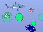Shark v1 5