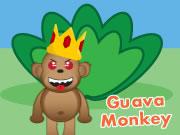 Guava Monkey