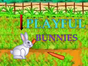 Playful Bunnies