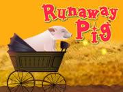 Runaway Pig