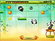 Panda Jump