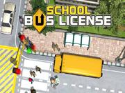 Driving School Bus License