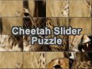 Cheetah Slider Puzzle