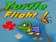 Turtle Flight