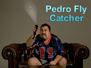 Pedro Fly Catcher