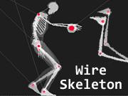 Wire Skeleton