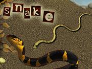 Snake 3000