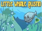 Little Whale Austin