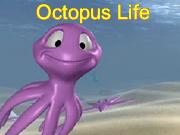 Octopus Life