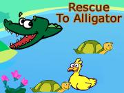 Rescue To Alligator