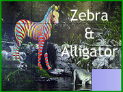 Zebra And Alligator