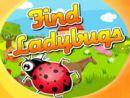 Find Ladybugs