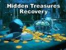 Hidden Treasures Recovery
