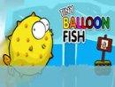 Tiny Balloon Fish