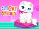 Cute Cat Bathing