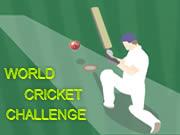 World Cricket Challenge