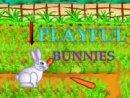 Playful Bunnies