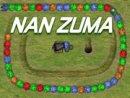 Nan Zuma